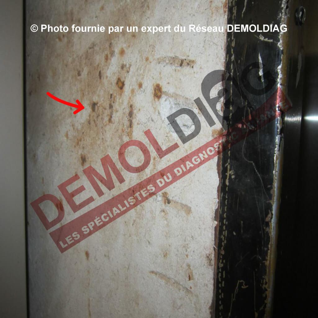 140 01 Protection Coupe Feu Contenant De L Amiante Cloison Et Porte Pali 232 Re Ascenseur